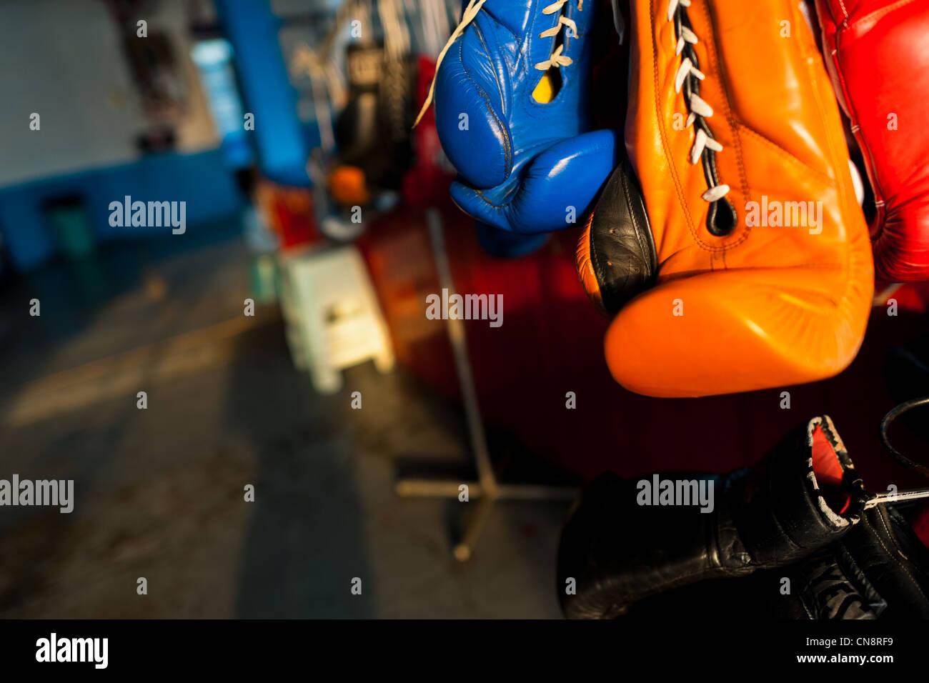 Bunte Boxhandschuhe hing aus einem Gestell in der Box-Gym in Mexico City, Mexiko. Stockbild