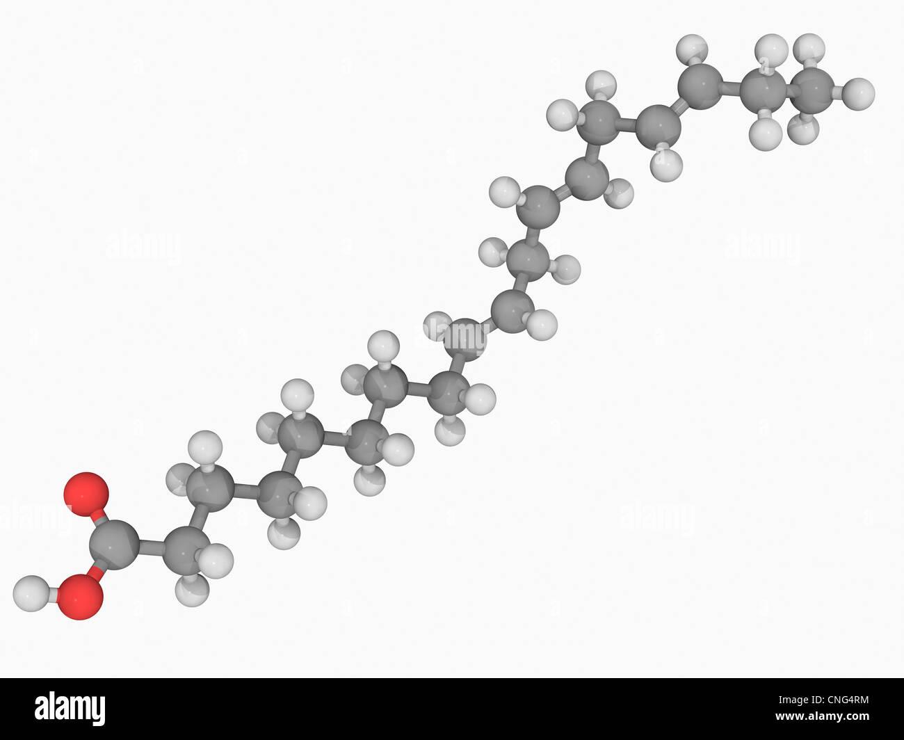 Alpha-Linolensäure saure Molekül Stockbild