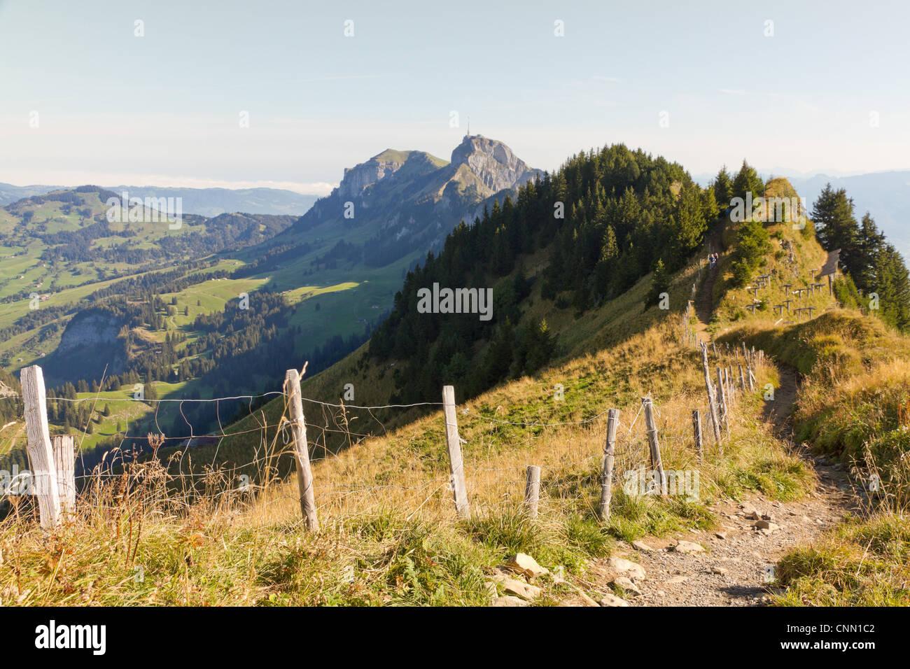 Wanderweg durch felsige Berglandschaft mit Berg Säntis in der Ferne Stockbild