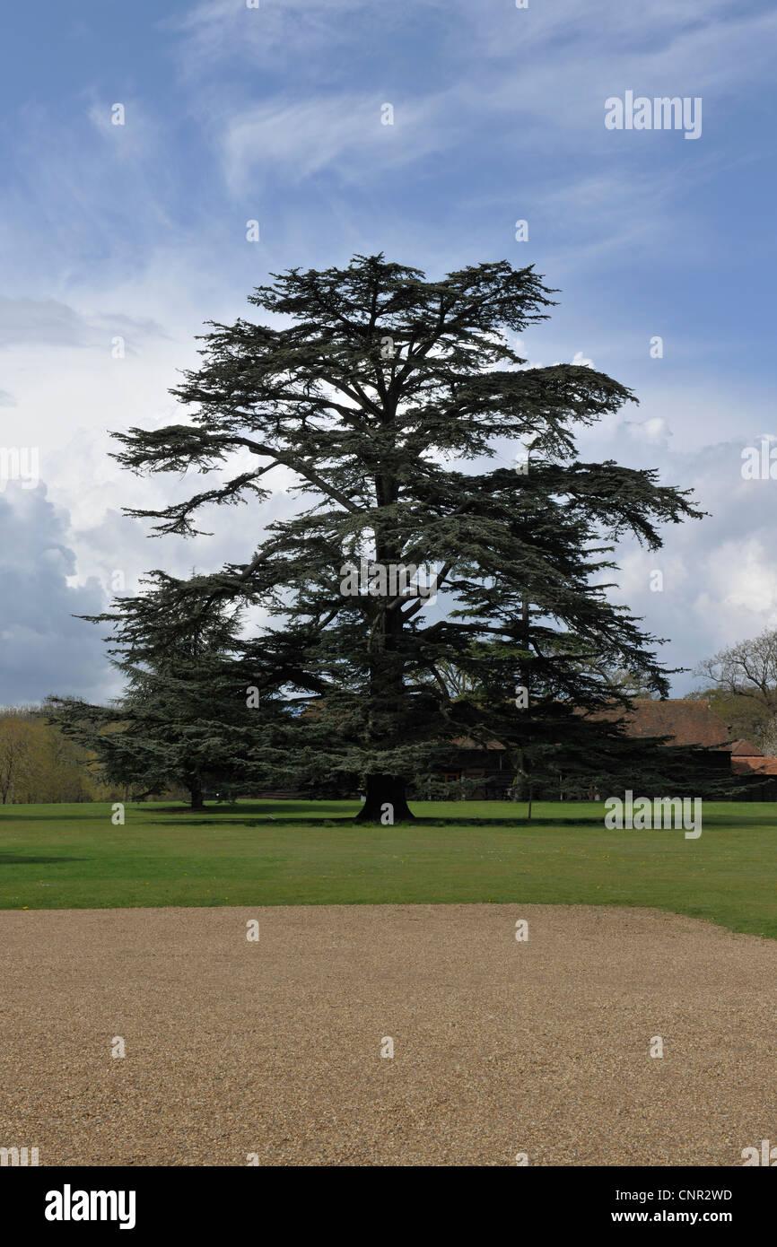 Loseley Park, Guildford, Surrey -1 Stockbild