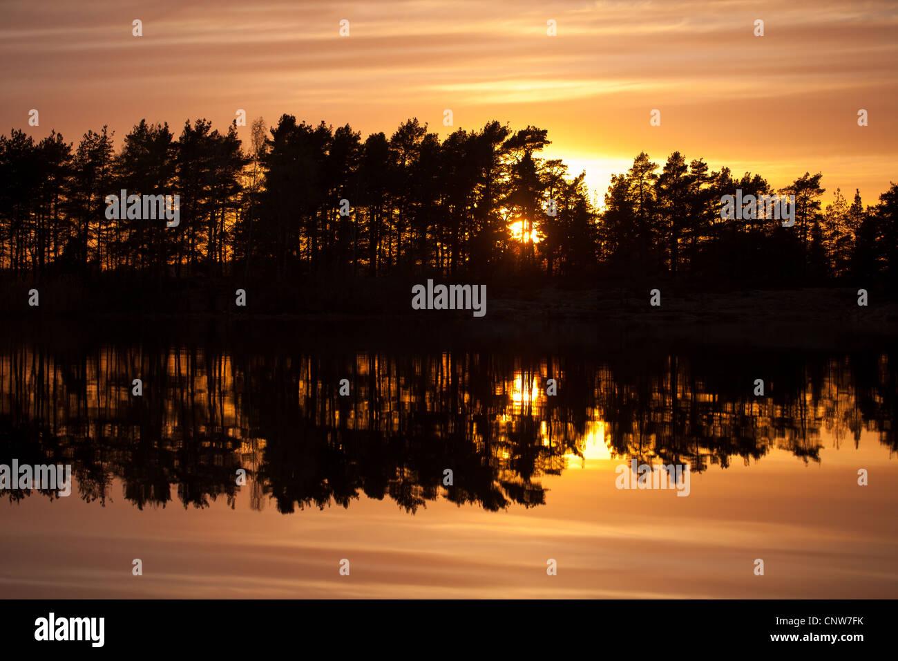 Wald, Sonnenuntergang und Reflexionen in den See Vansjø, Råde Kommune, Østfold Fylke, Norwegen. Stockbild