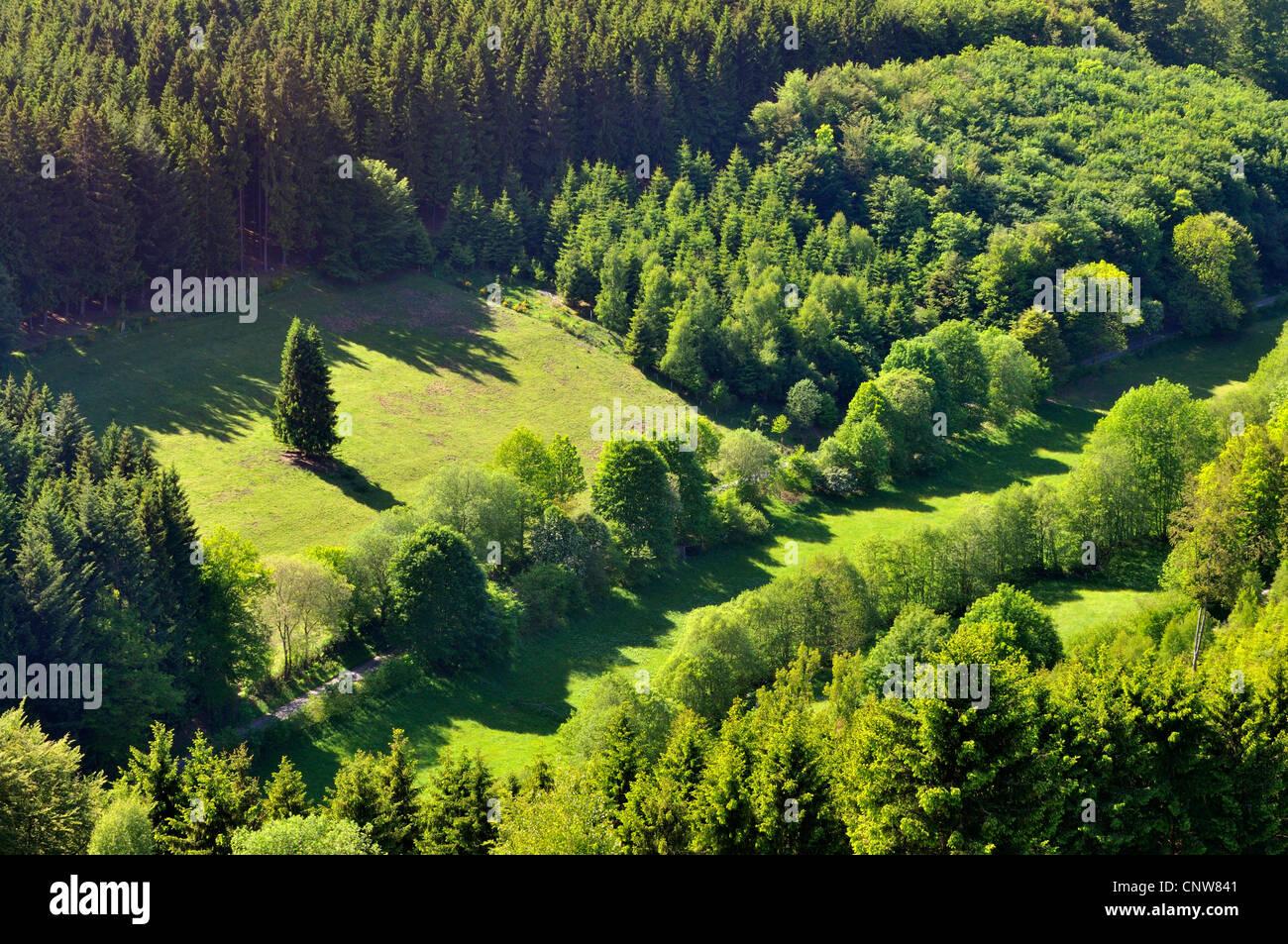Blick von einem Mischwald und Kulturlandschaften, Deutschland Stockbild