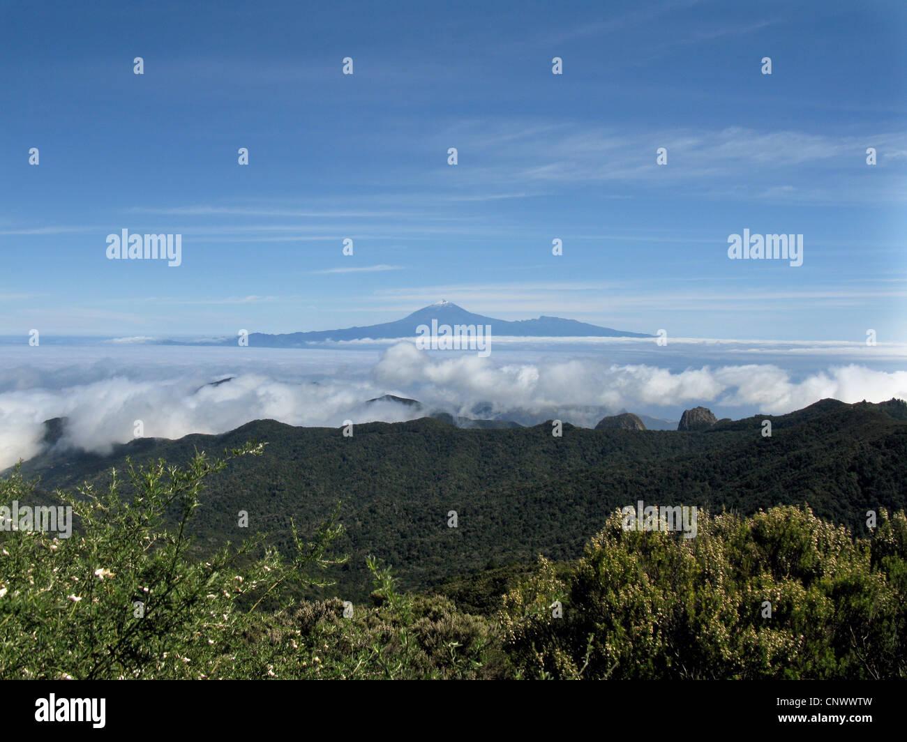 Blick vom Alto de Garajonay, der Lorbeerwald einen Gipfel des Teide auf Teneriffa, Kanarische Inseln, Gomera, Nationalpark Stockbild