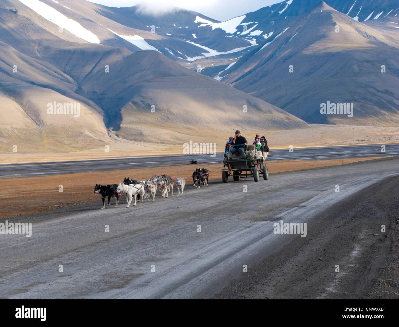 Hundegespann ziehen einen Wagen mit Touristen auf einer einsamen Straße, Norwegen, Spitzbergen, Longyearbyen Stockbild