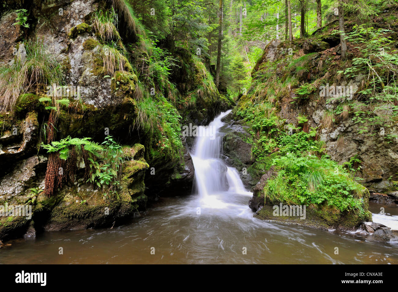 wasserfall in die schlucht hoellental deutschland baden w rttemberg schwarzwald stockfoto. Black Bedroom Furniture Sets. Home Design Ideas