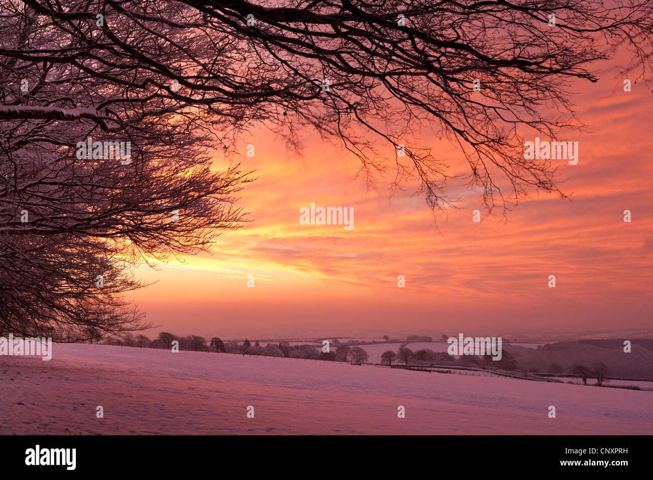 Spektakulären Sonnenaufgang Himmel über Schnee bedeckt Landschaft, Exmoor, Somerset, England. Winter (Januar) Stockbild