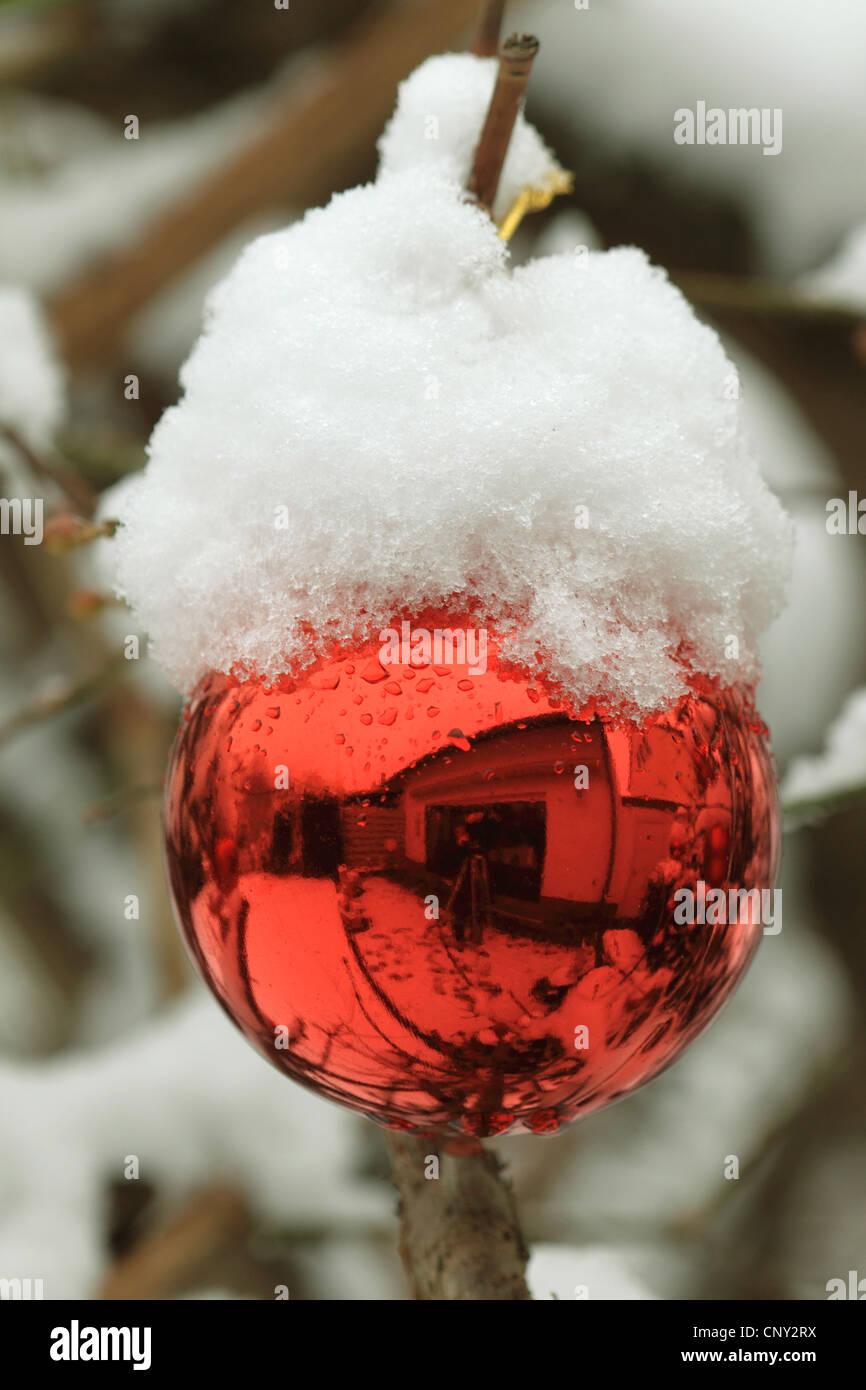 Weihnachts-Ball auf einem verschneiten Weihnachtsbaum Stockbild