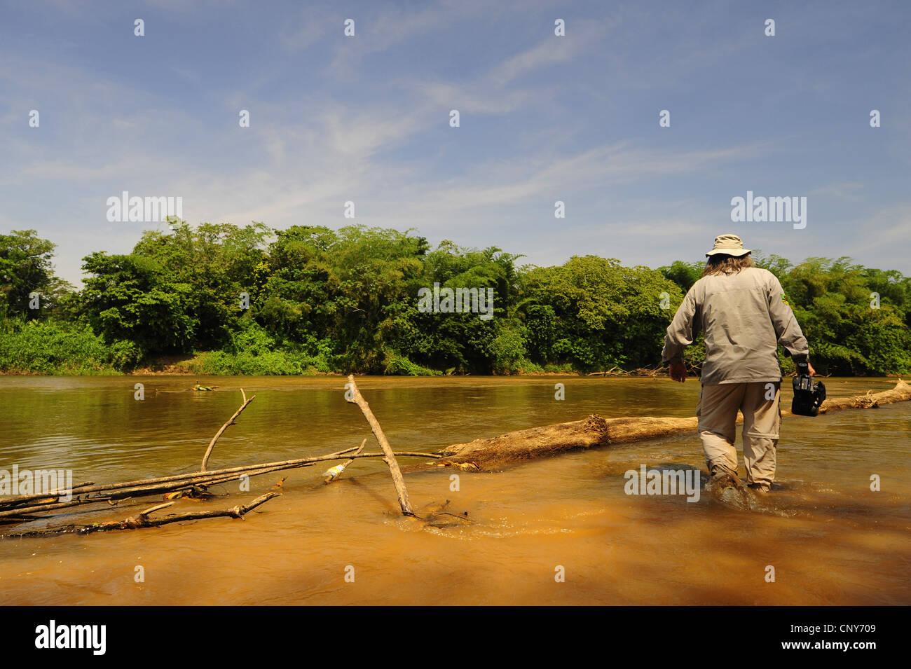ein Spaziergang durch das Wasser am Ufer eines Flusses durch den tropischen Regenwald, Honduras, La Mosquitia, Las Stockfoto
