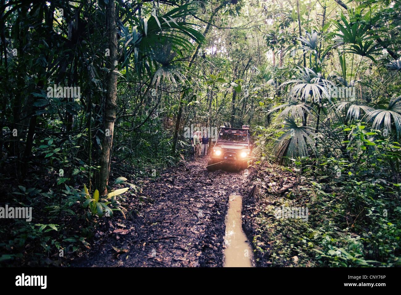 Affe Flusspfad, Belize Stockbild