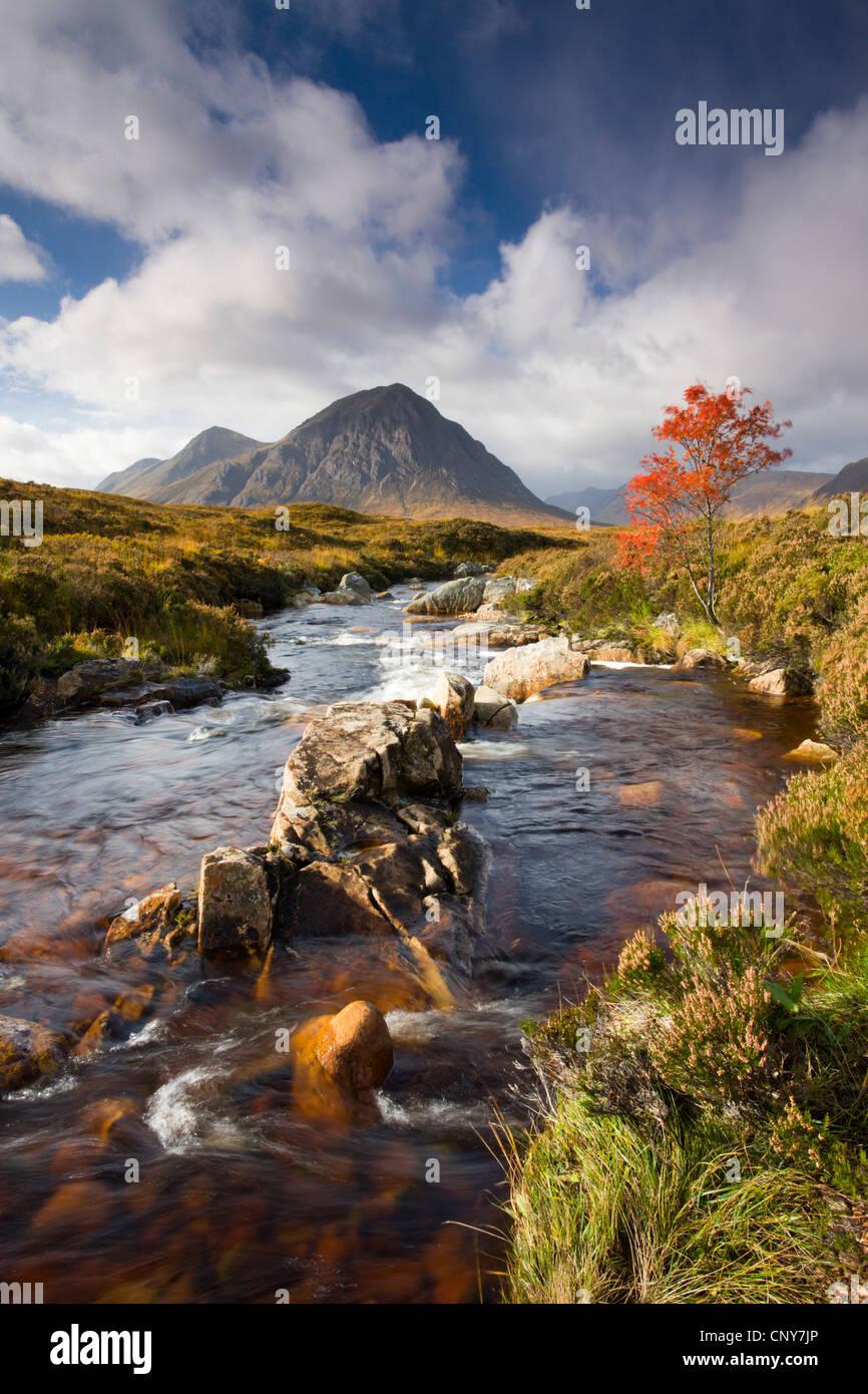Ein Strom fließt durch eine herbstliche Rannoch Moor in Richtung Buachaille Etive Mor, Highlands, Schottland Stockbild