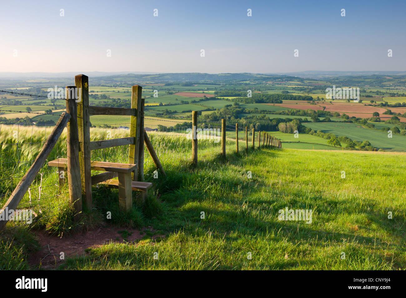 Wanderweg und Stil durch Felder, Raddon Hill, Mid Devon, England. Sommer (Juli) 2009 Stockbild