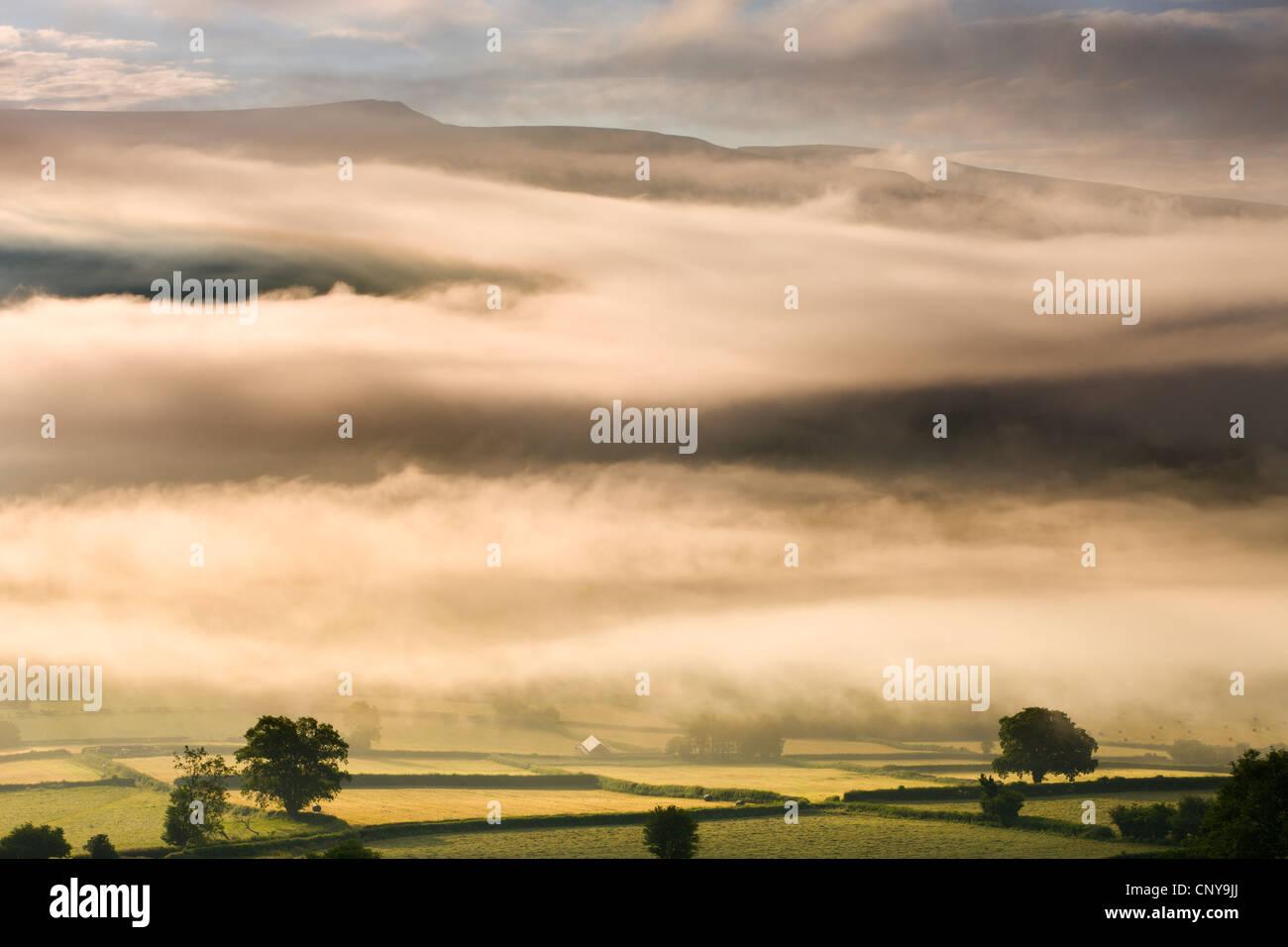 Nebel hängt über der Landschaft in der Nähe von Bwlch, Brecon Beacons National Park, Powys, Wales, Stockbild