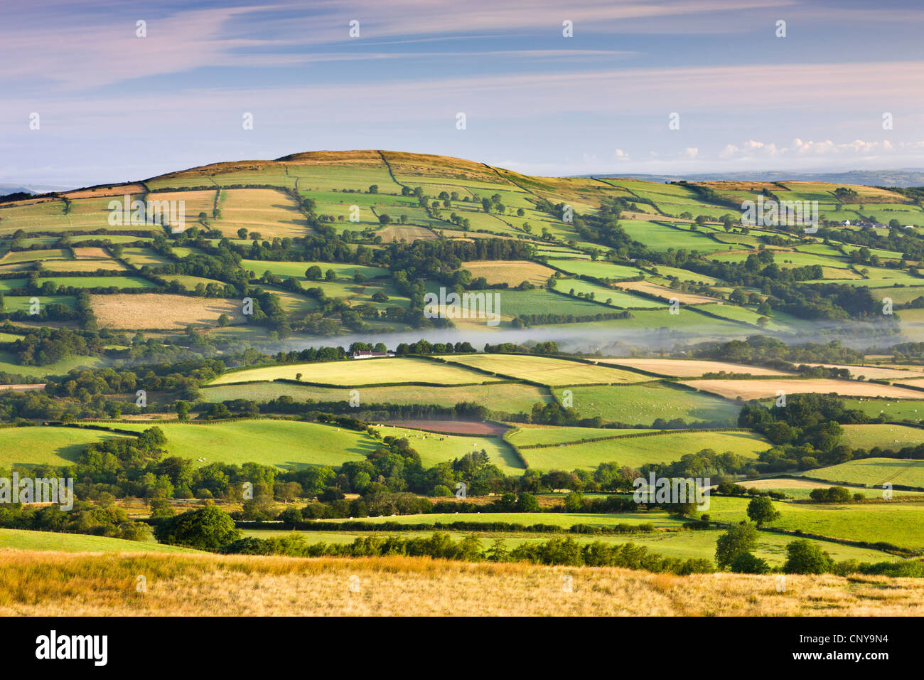 Patchwork-Felder und hügeligen Landschaft, Brecon Beacons National Park, Carmarthenshire, Wales, UK. (August) Stockbild