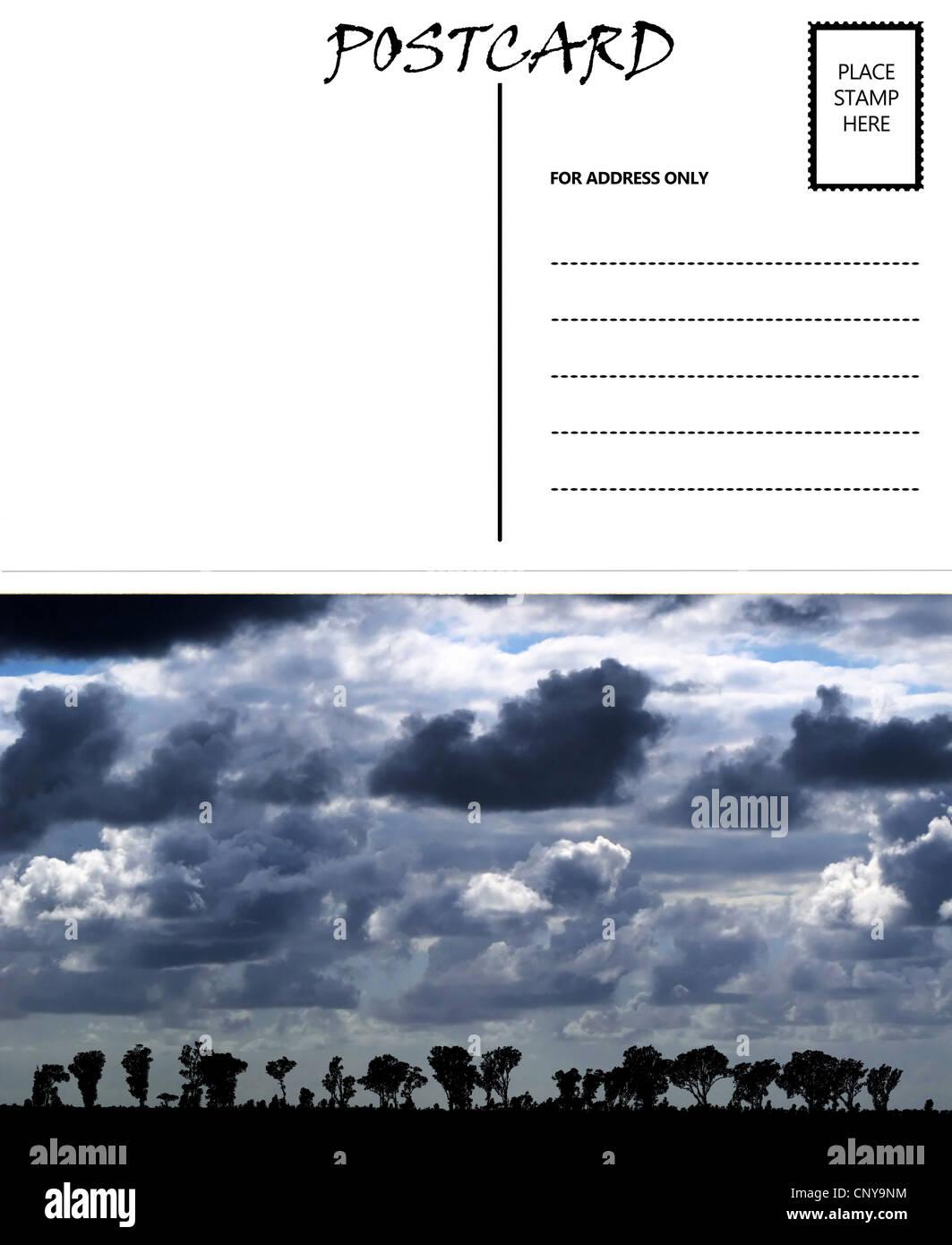 Groß Leere Postkarte Vorlage Zeitgenössisch ...