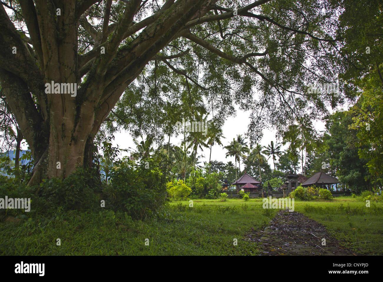 ein Hindu-Tempel in einem ländlichen Dorf, Indonesien, Bali Stockbild