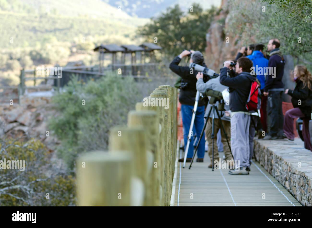 eine Gruppe kann Personen tun, Vogelbeobachtung im Monfrague National Park in Spanien Stockbild