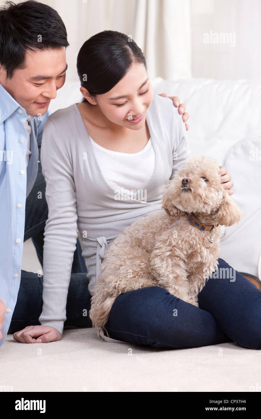 Junge Frau mit einem Haustier Spielzeug Pudel Stockbild