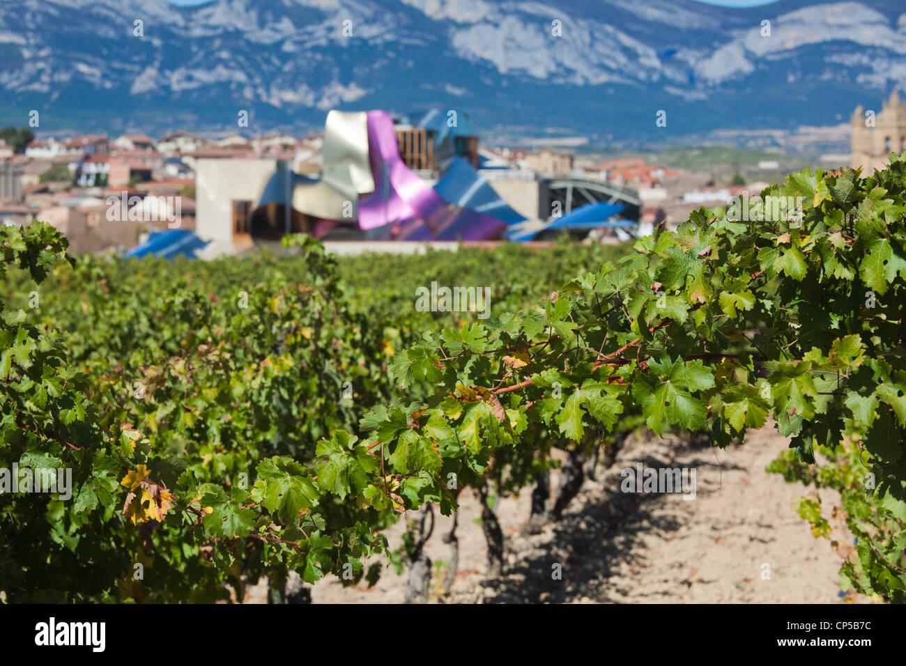 Spanien, La Rioja-Gebiet, Provinz Alava, Elciego, Blick auf die erhöhten Stadt und Hotel Marques de Riscal, Stockbild