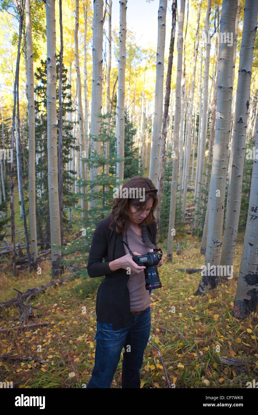 Frau, die im Display der digitalen slr-Kamera in einem Wald. Stockbild