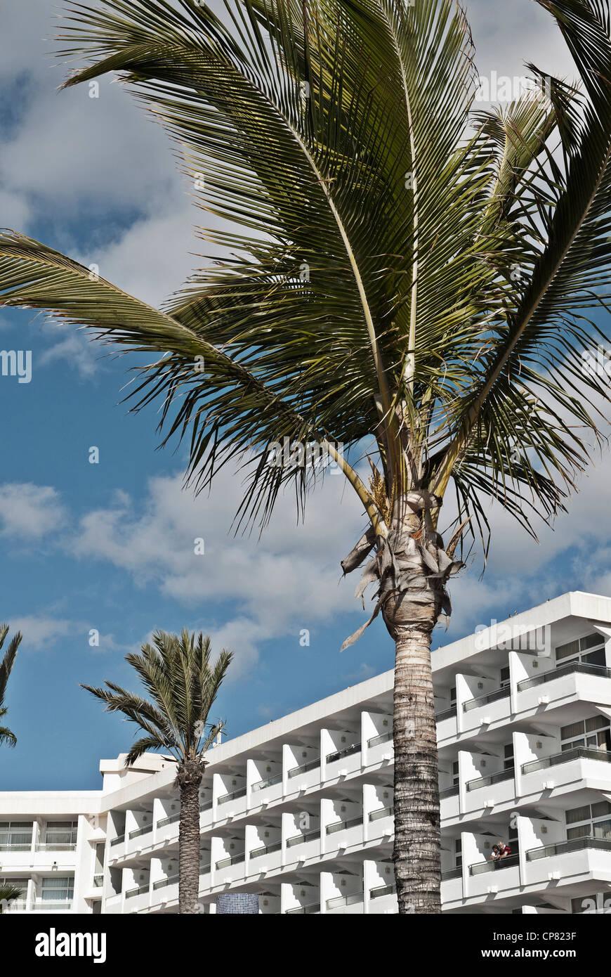 Hotel-Fassade und Palmen Bäume auf der Kanarischen Insel Lanzarote. Stockbild
