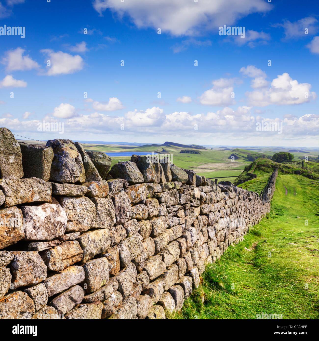 Trockenmauer als Hadrianswall in Northumberland den gleichen Kurs ausgeführt. Stockbild