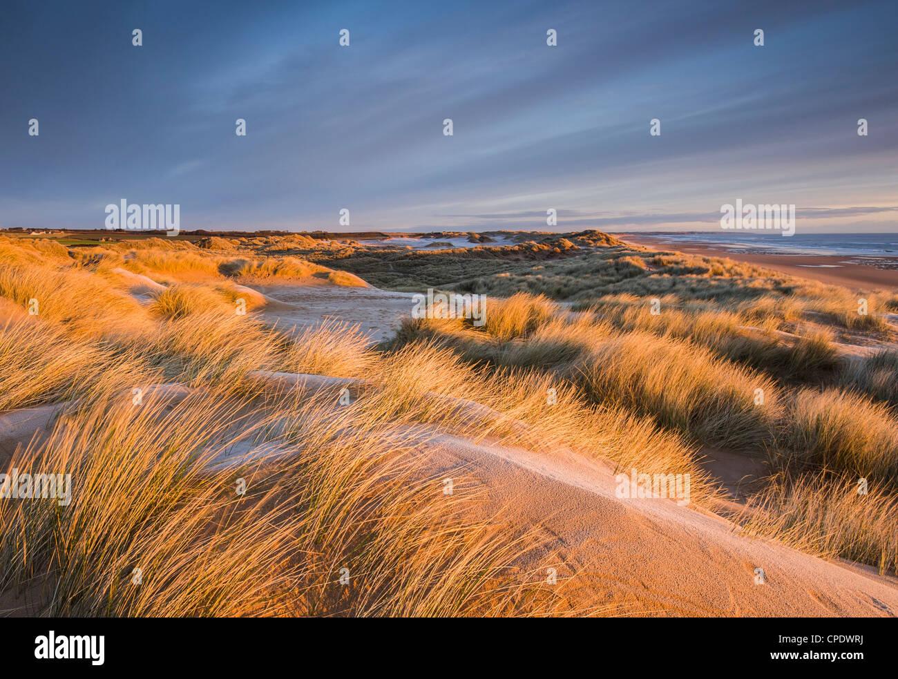 Balmedie Strand bei Sonnenaufgang, Aberdeenshire, Schottland, UK Stockbild