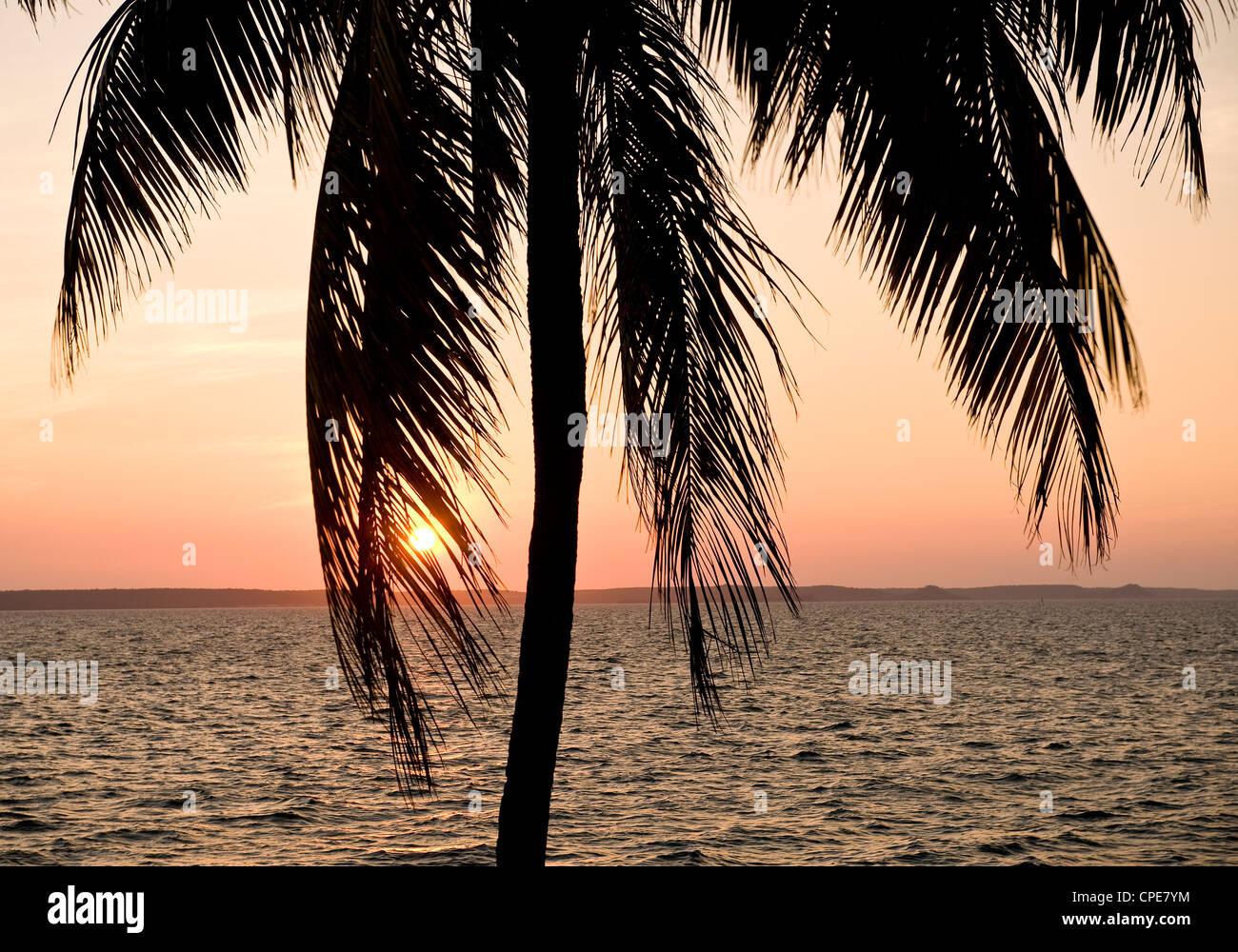 Punta Gorda, Cienfuegos, Kuba, Karibik, Karibik, Mittelamerika Stockbild