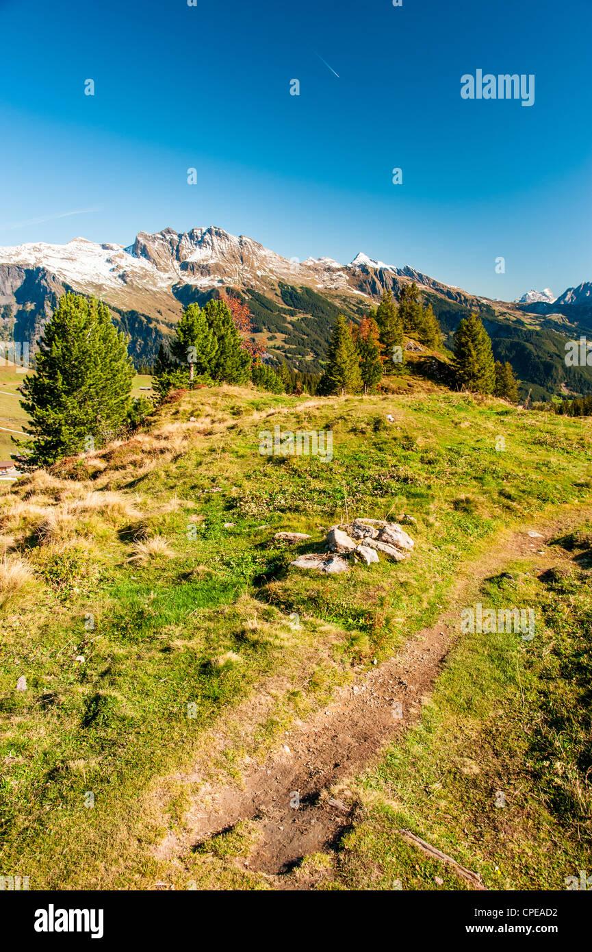 Wanderweg in Schweizer Alpen bei Maennlichen oberhalb Grindelwald, Schweiz Stockbild