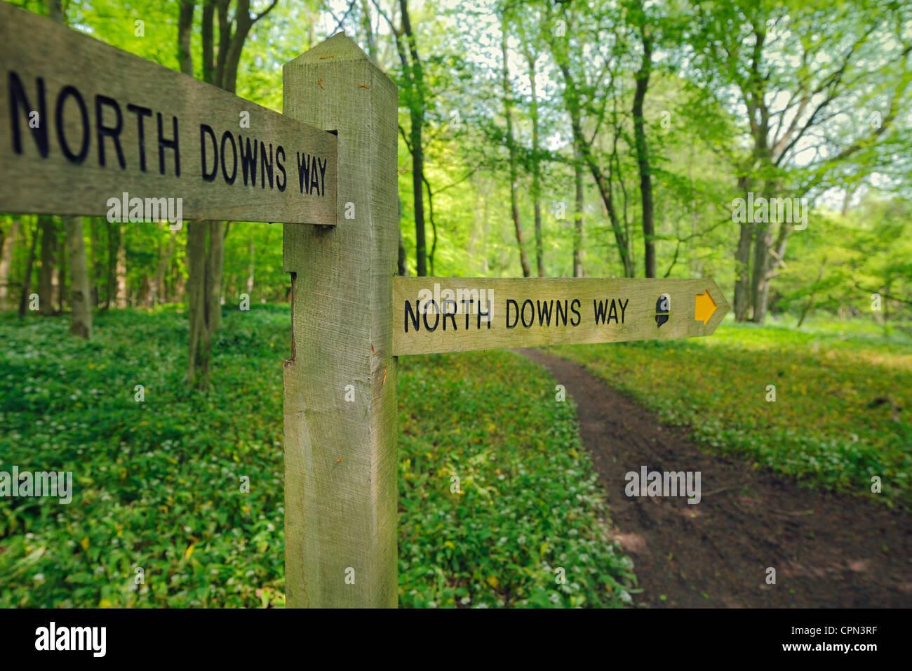North Downs Way Wegweiser. Stockbild