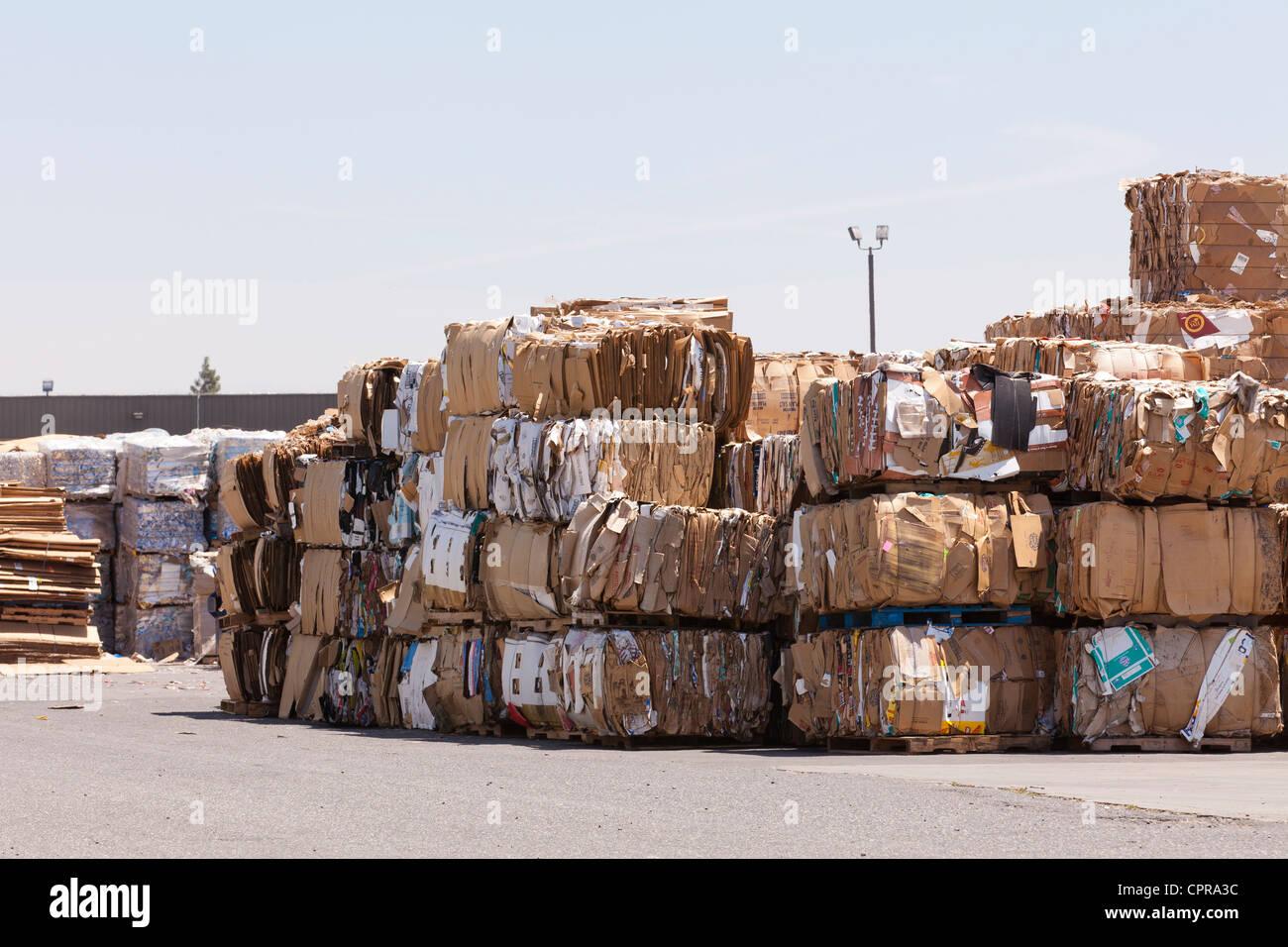 Ballen aus Pappe-Stacks in einer recycling-Anlage Stockbild