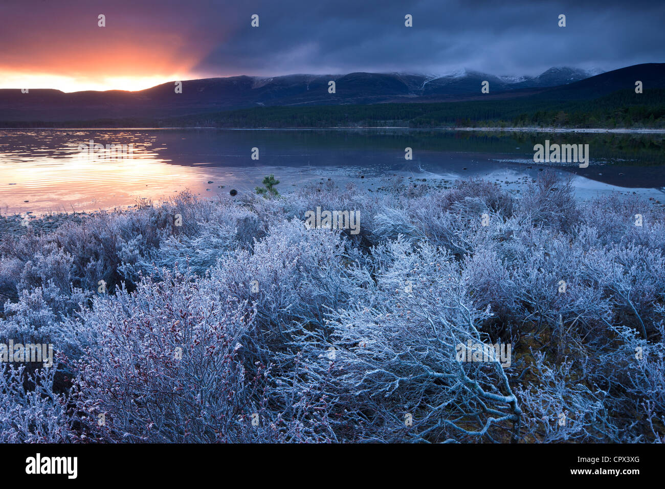 Loch Morlich und den Cairngorms im Morgengrauen, Badenoch und Strathspey, Schottland Stockbild