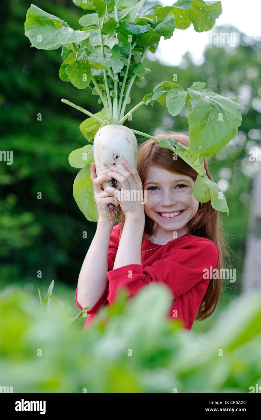 Mädchen hält eine frisch geerntete Rettich (Raphanus) Stockbild