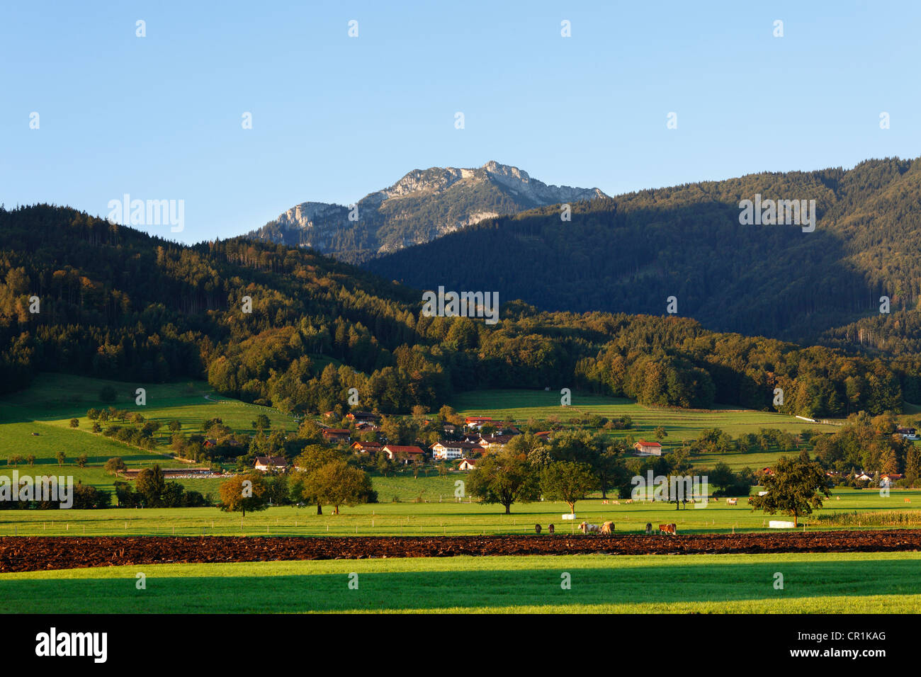 mangfallgebirge stockfotos mangfallgebirge bilder alamy. Black Bedroom Furniture Sets. Home Design Ideas