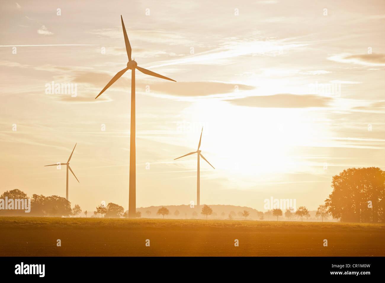 Windkraftanlagen in ländlichen Landschaft Stockbild