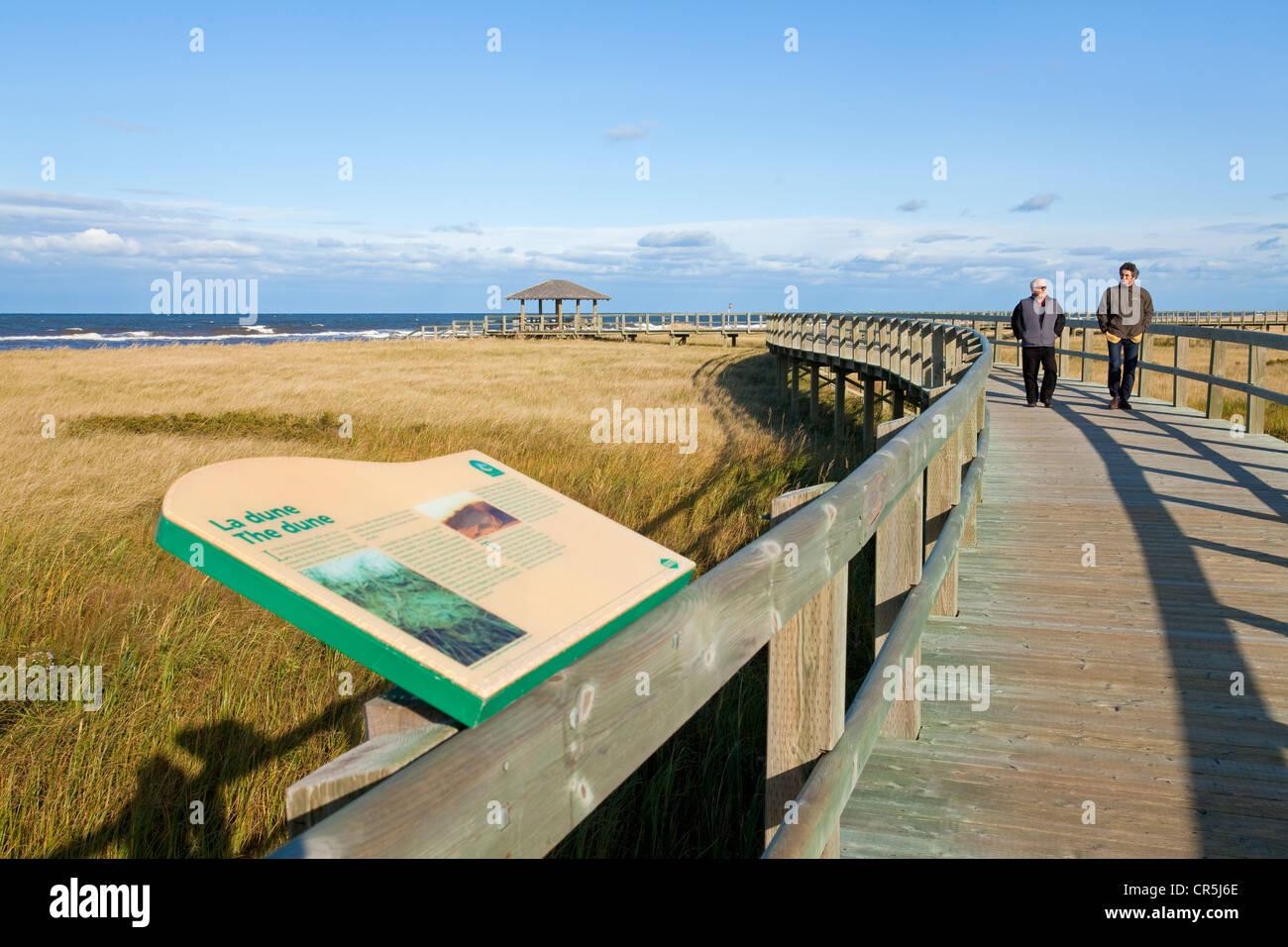 Buctouche Dune, Irving-Annahmestelle, Acadia, New Brunswick, Kanada Stockbild