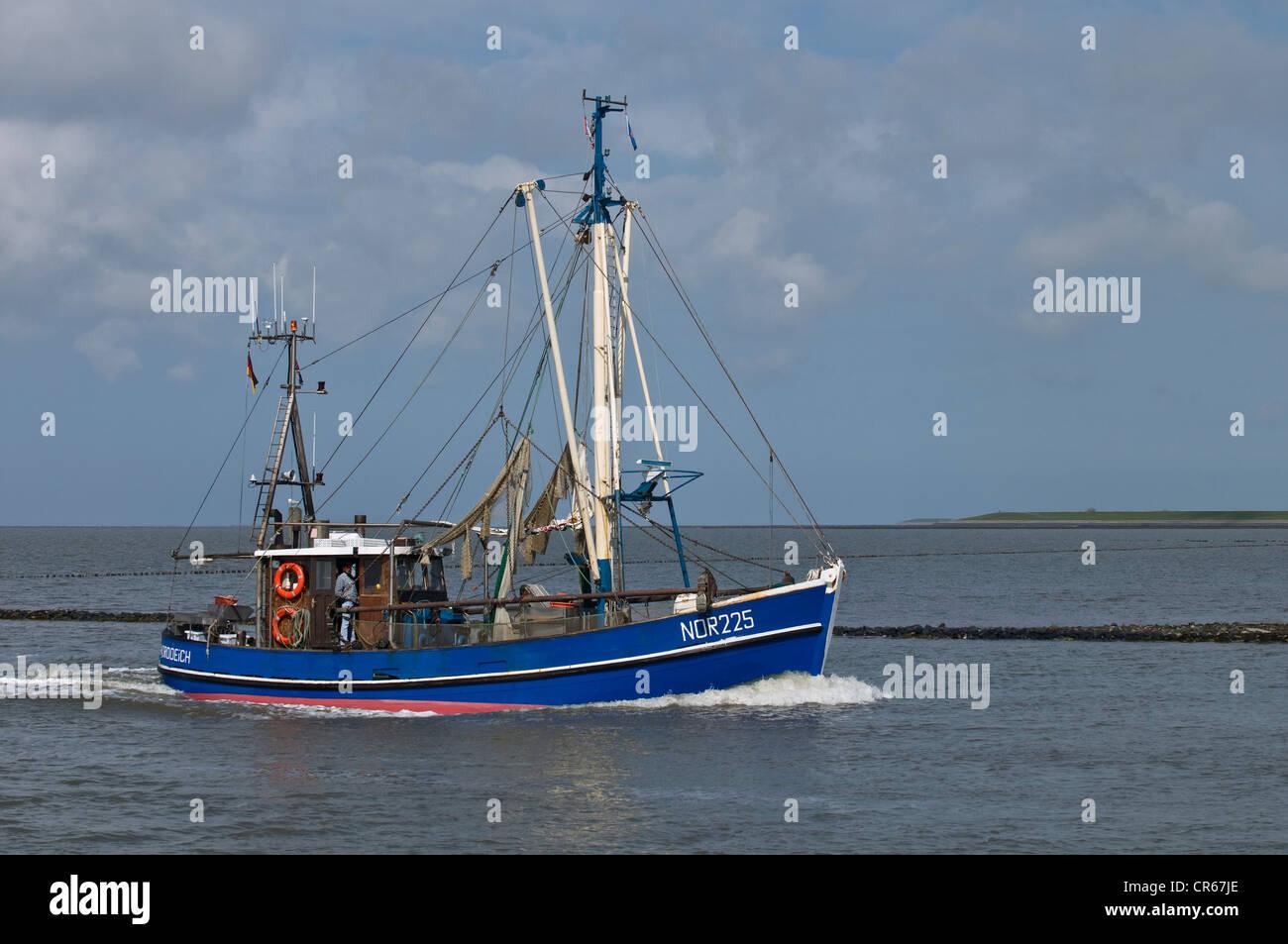 Blaue Krabbe Fischerboot, NOR 225, Rückkehr in den Hafen von Norddeich nach Fischen, Lower Saxon Wattenmeer Stockbild