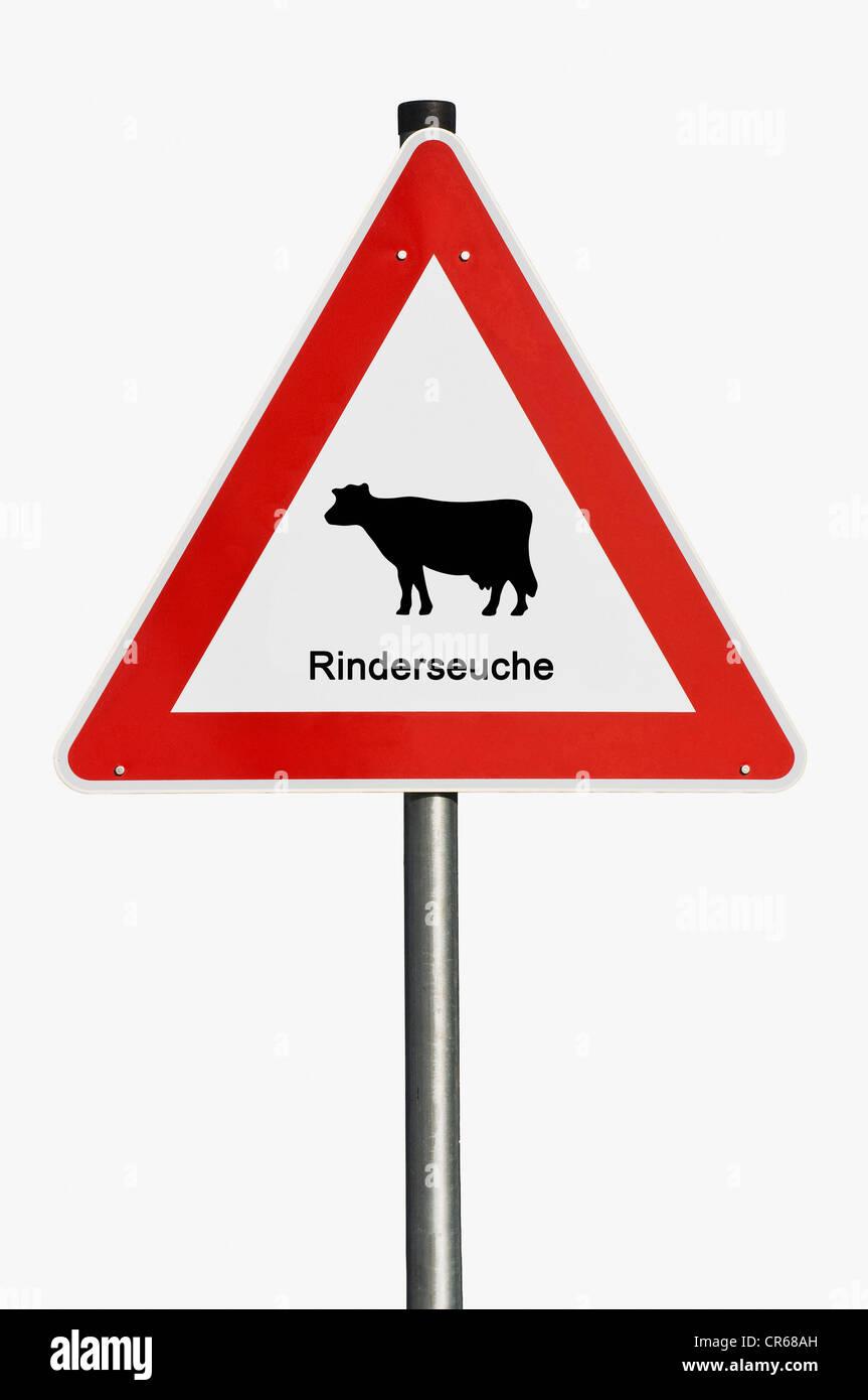 Warnschild, Rinderseuche, Deutsch für wütende Kuhkrankheit Stockbild