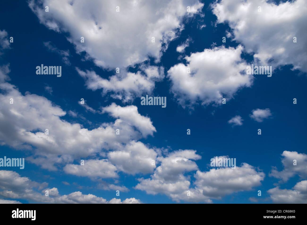Zahlreichen Cumulus Wolken, blauer Himmel Stockbild