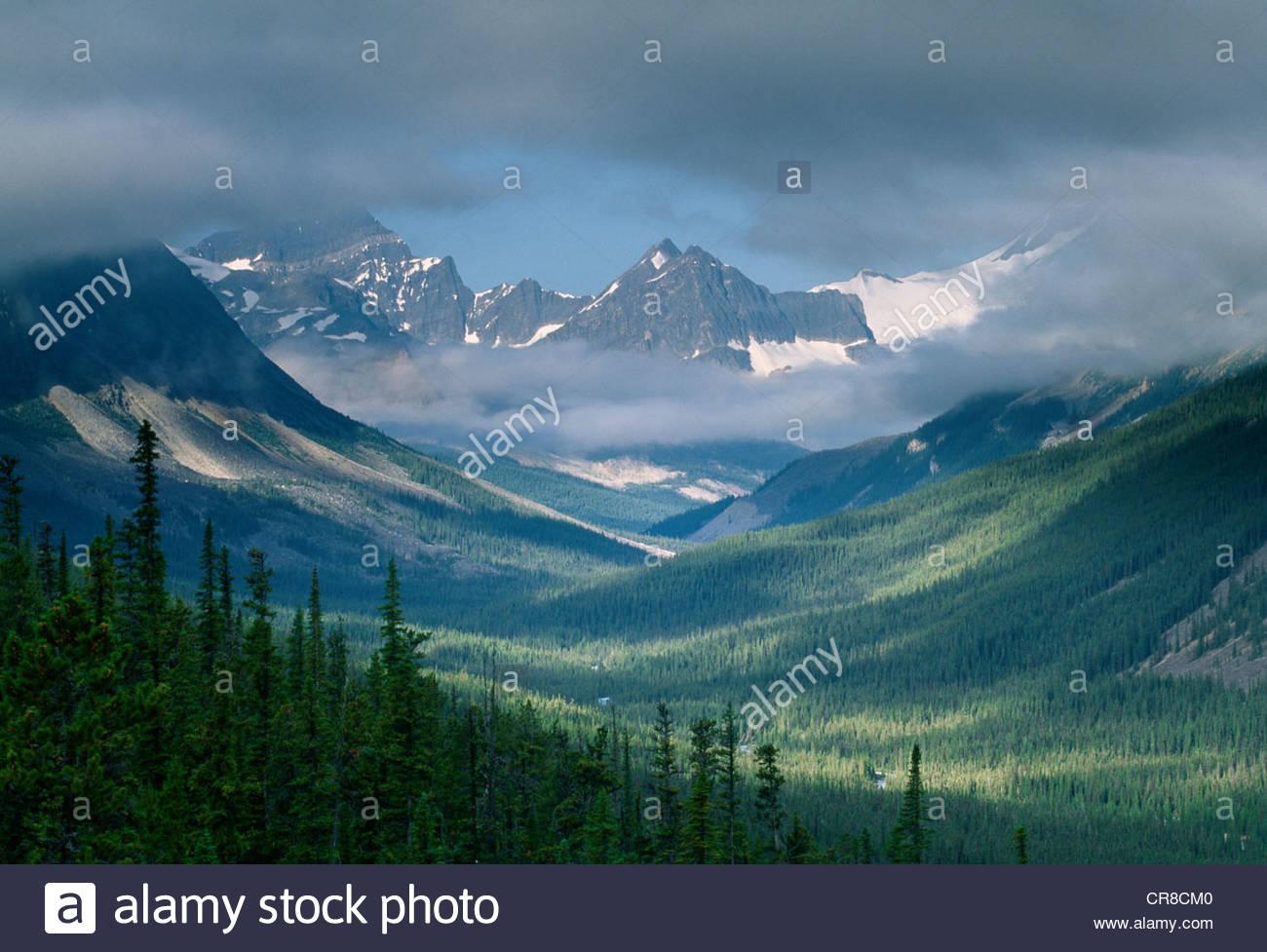 Kanadischen Rocky Mountains, Banff Nationalpark, Alberta, Kanada Stockbild