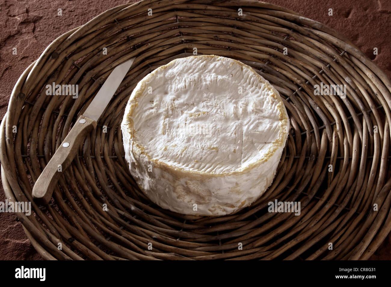 Französischer Weichkäse auf einem Korb-Tablett Stockfoto