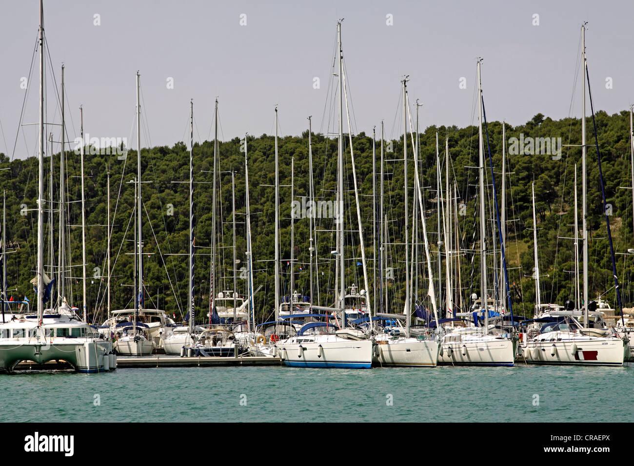 Marina, Fluss Krka Skradin, Dalmatien, Kroatien, Europa Stockfoto