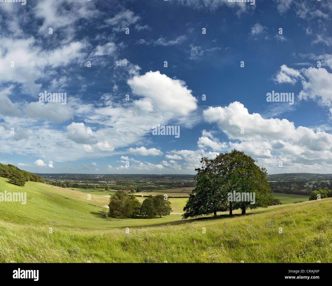Blick über den North Downs in Richtung Sevenoaks. Stockbild