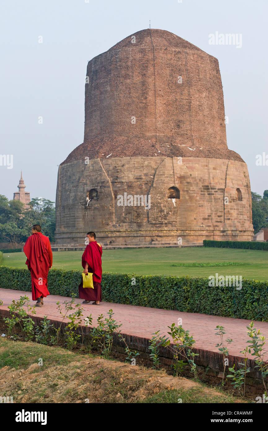 Mönche vor der Dhamek Stupa, buddhistischen Heiligen Ort Sarnath, Uttar Pradesh, Indien, Asien Stockfoto