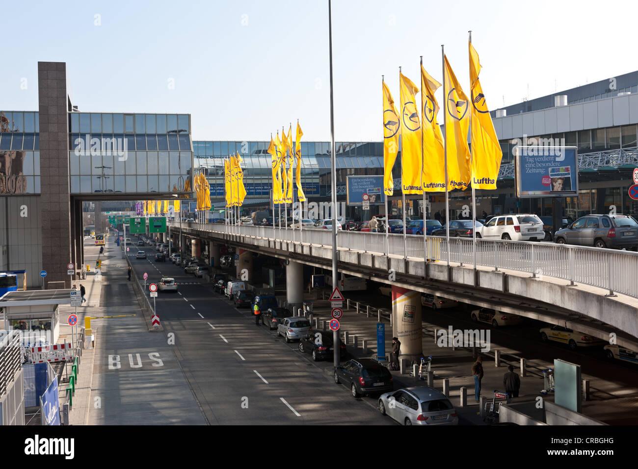 Frankfurt Flughafen, Ankunft Terminal 1, Frankfurt Am Main, Hessen, Deutschland, Europa Stockbild