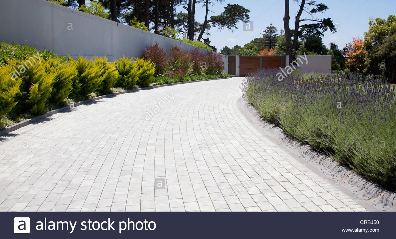 Pflanzen entlang der gepflasterten Auffahrt Stockbild