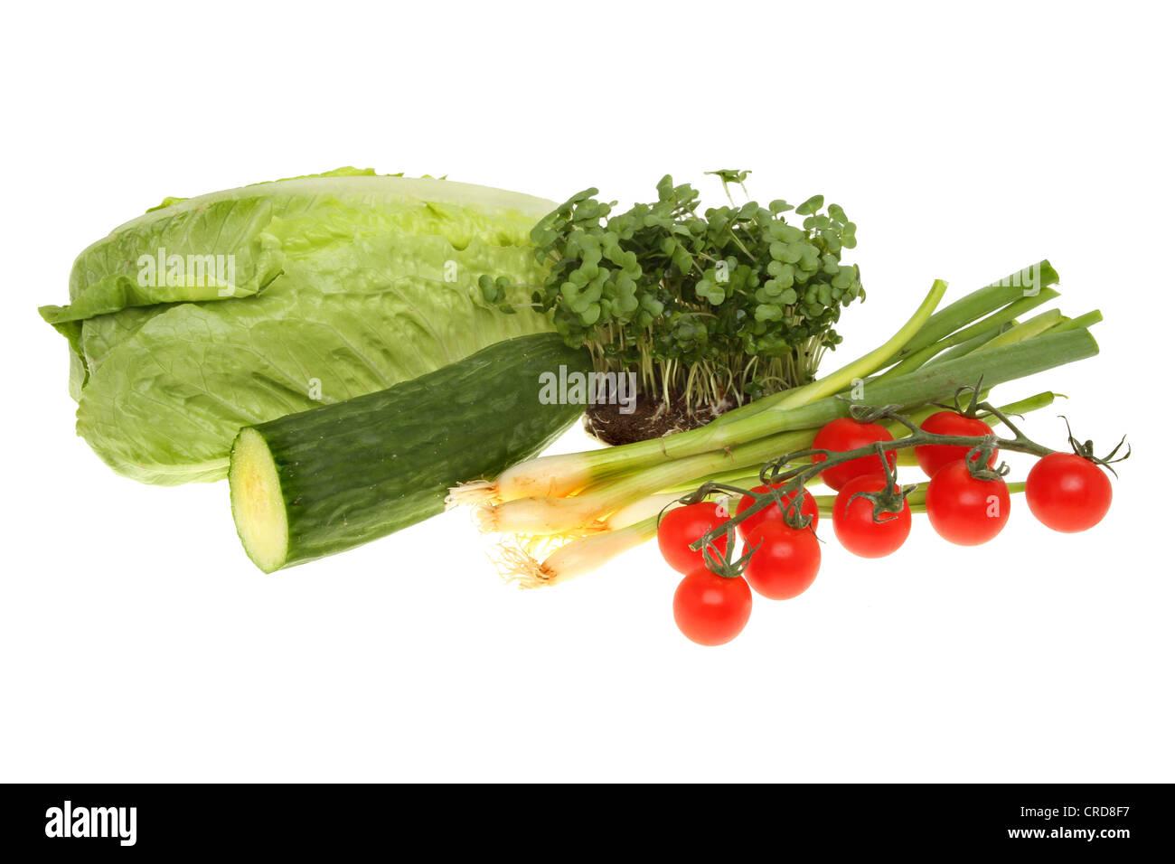 Salatzutaten, Kopfsalat, Kresse, Gurken, Tomaten und Zwiebeln isoliert gegen weiß Stockbild