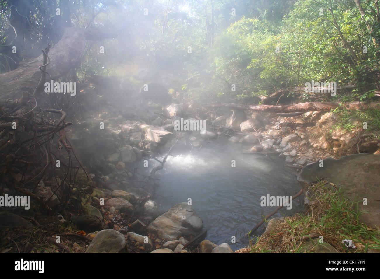 Vulkanische Fumarole im Regenwald. Las Pailas Trail, Rincon De La Vieja Nationalpark, Guanacaste, Costa Rica. Stockbild