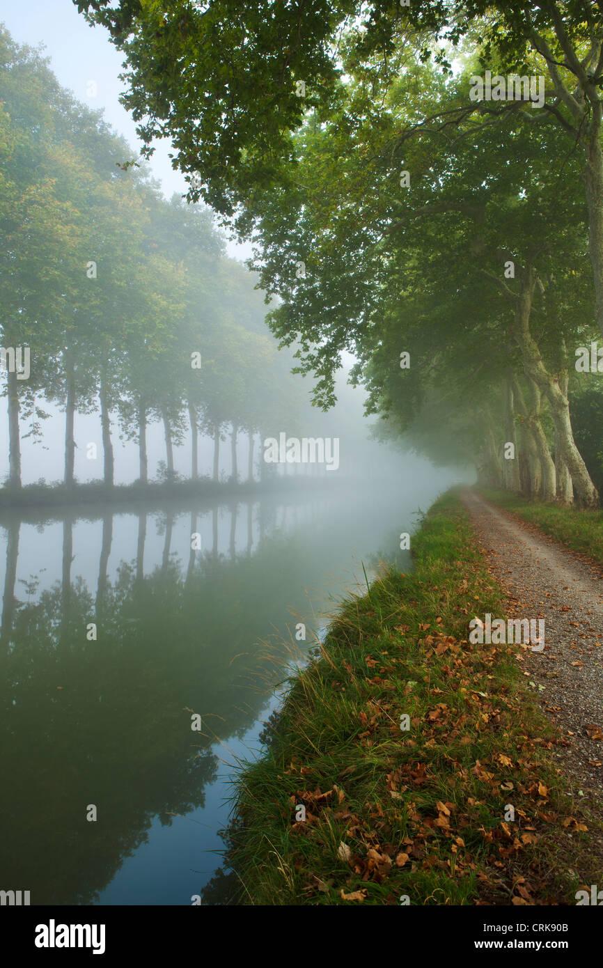 der Canal du Midi nr Castelnaudary, Languedoc-Roussillon, Frankreich Stockbild