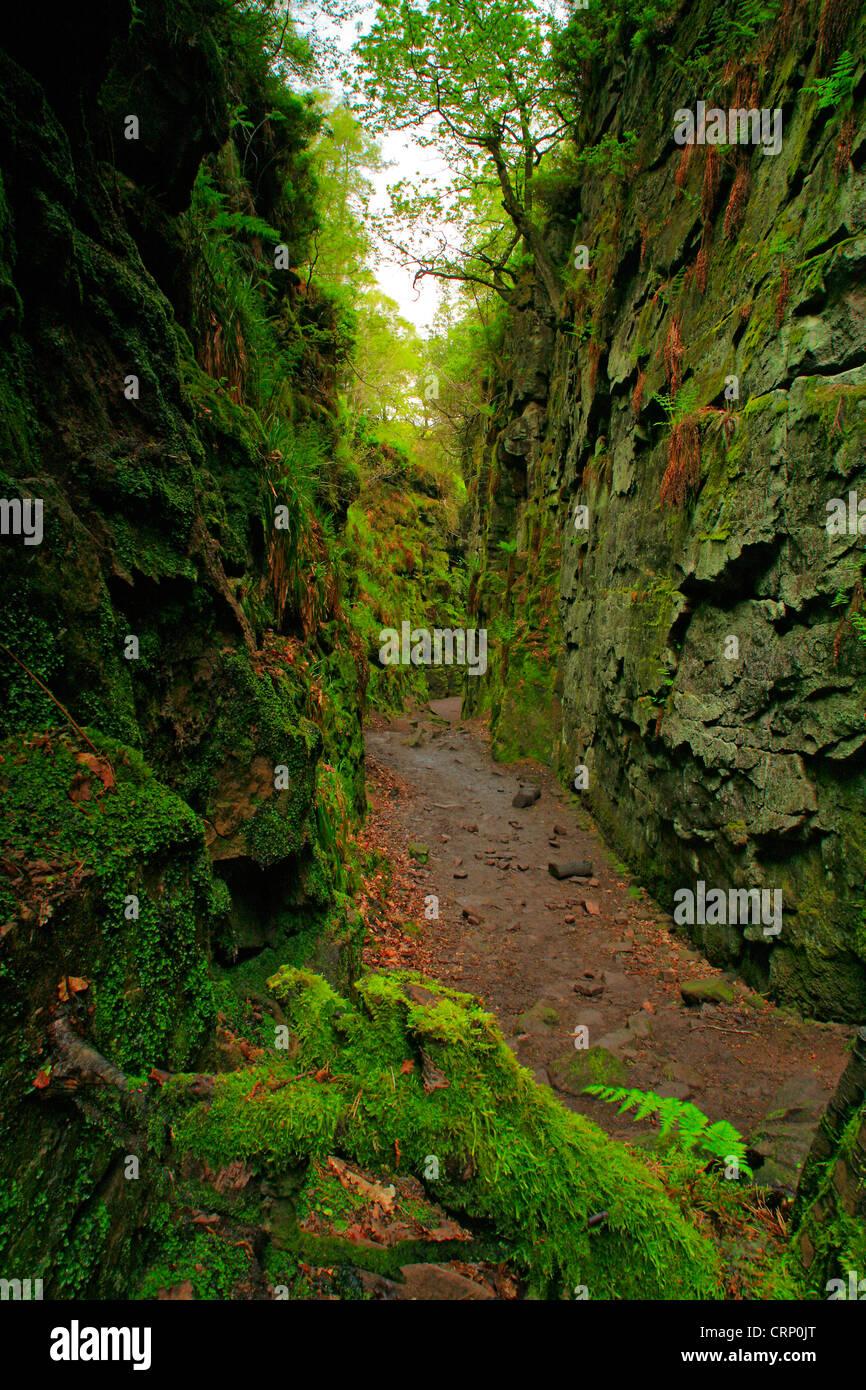 Lud die Kirche in eine natürliche Spalt in den Felsen versteckt tief in einem Wald Schwarzwald genannt. Es Stockbild