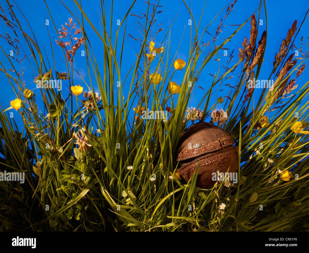 Sehr alte und zerbrochene Cricketball lange Gras gefunden; vor vielen Jahren verloren. Stockbild